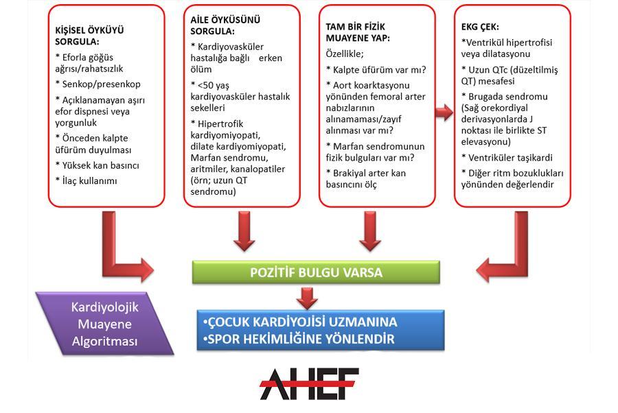 Sağlık Raporları Standartı ve Algoritması