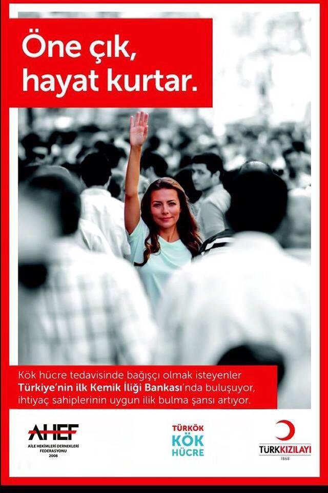 AHEF&TÜRK  KIZILAYI TÜRKÖK EŞGÜDÜM TOPLANTISI
