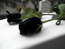 THSK Başkanı`nın annesi vefat etti